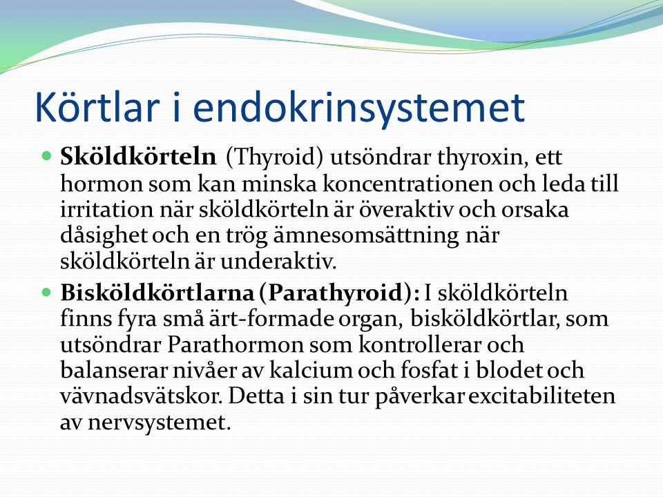 Körtlar i endokrinsystemet  Sköldkörteln (Thyroid) utsöndrar thyroxin, ett hormon som kan minska koncentrationen och leda till irritation när sköldkö