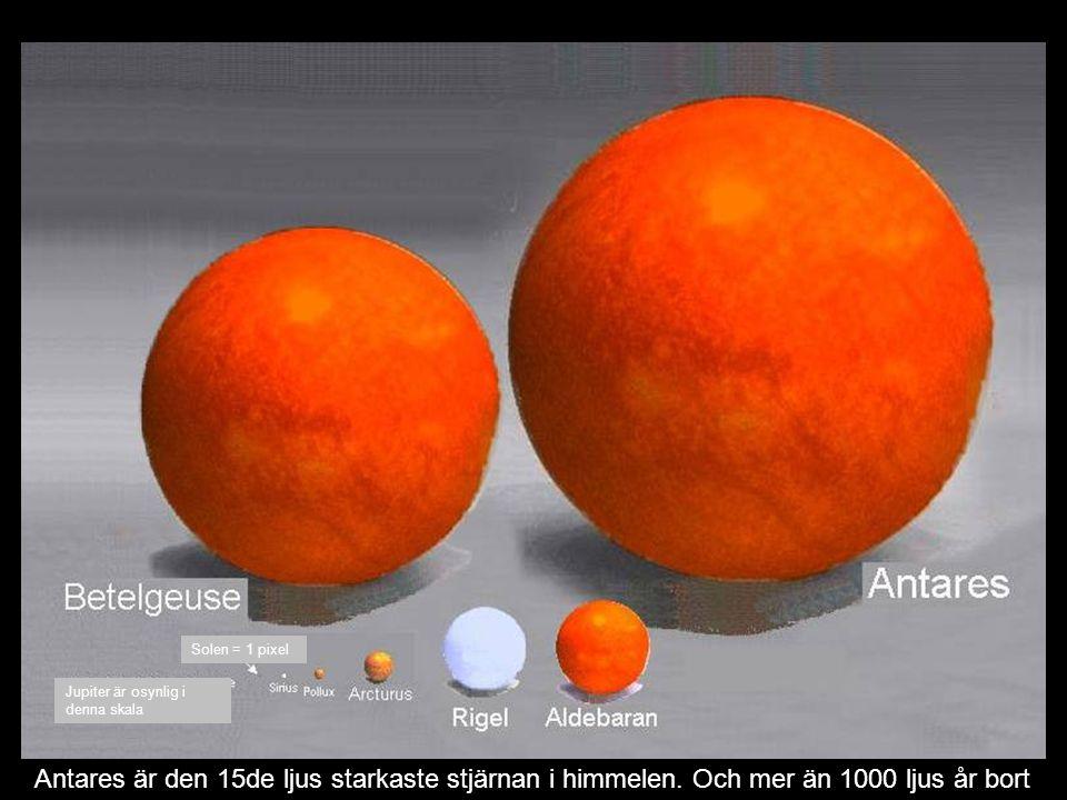 Antares är den 15de ljus starkaste stjärnan i himmelen.