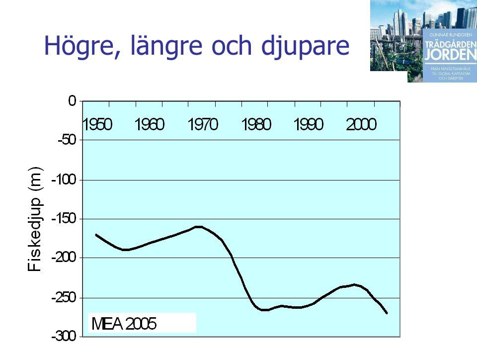 Gunnar Rundgren Trädgården Jorden Högre, längre och djupare