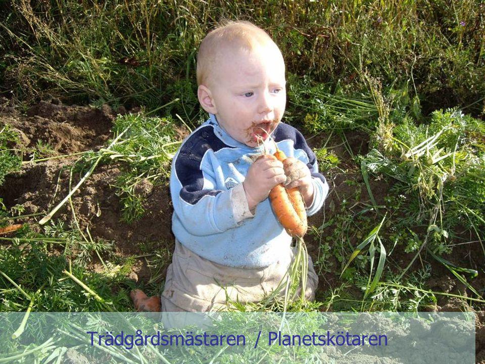 Gunnar Rundgren Trädgården Jorden Trädgårdsmästaren / Planetskötaren
