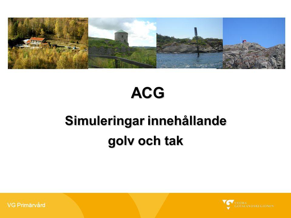 VG Primärvård ACG ACG Simuleringar innehållande golv och tak