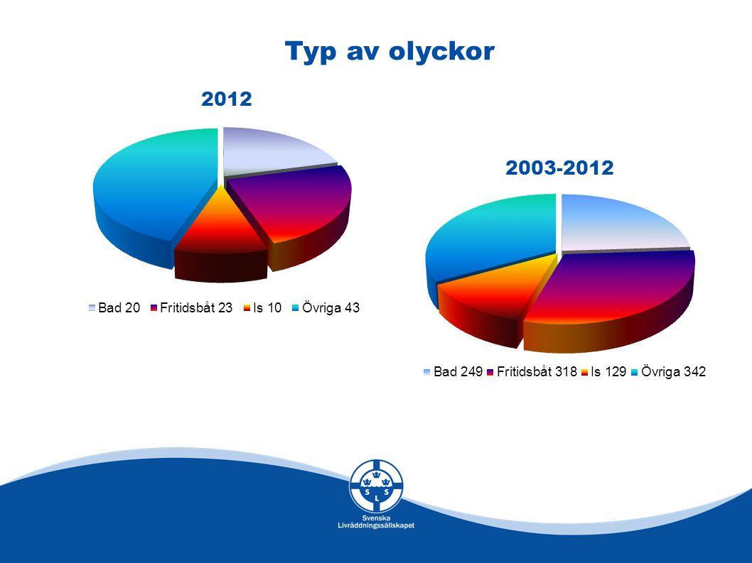 2012 2003-2012 Typ av olyckor