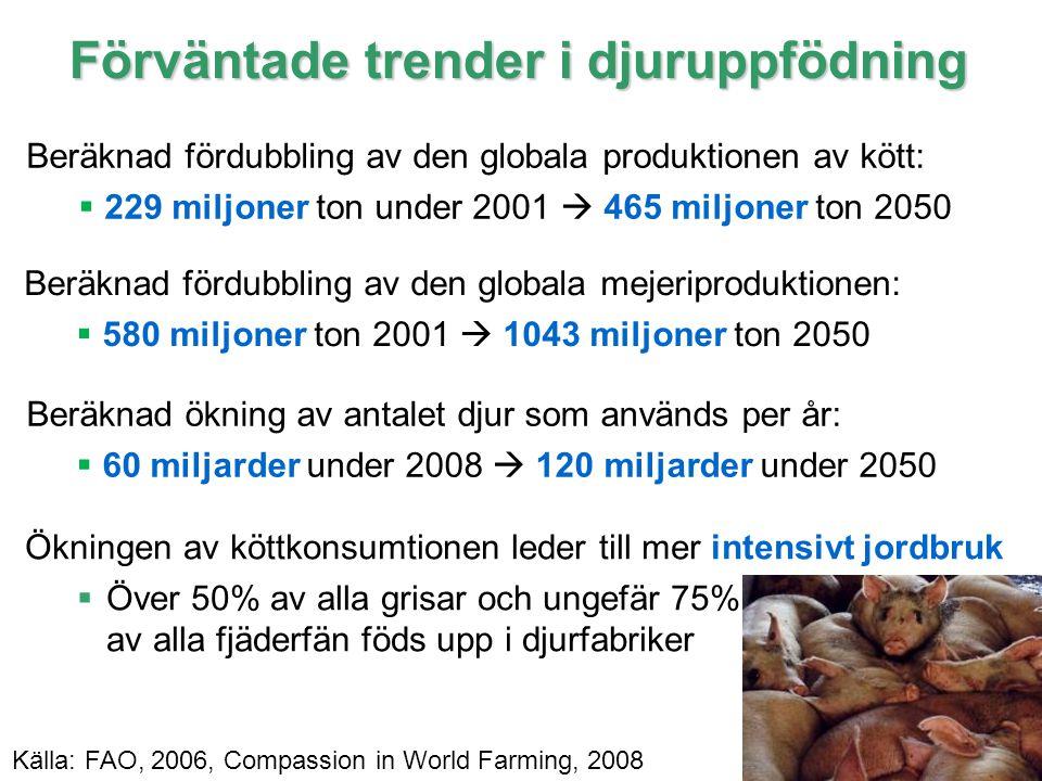 17 IPCC Förväntade trender i djuruppfödning Beräknad fördubbling av den globala produktionen av kött:  229 miljoner ton under 2001  465 miljoner ton