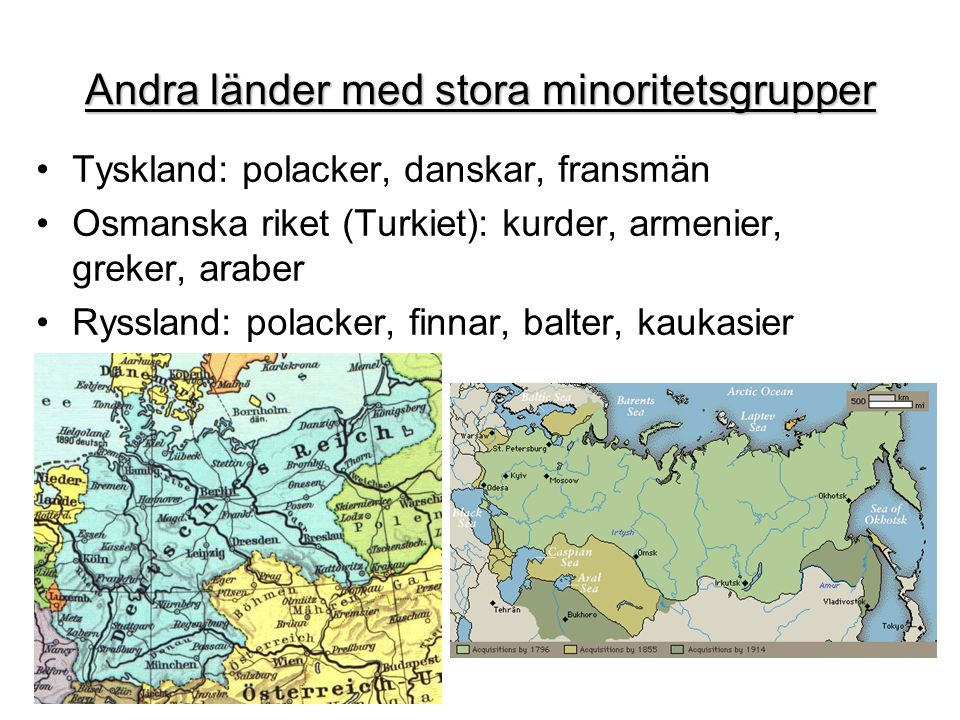 Andra länder med stora minoritetsgrupper •Tyskland: polacker, danskar, fransmän •Osmanska riket (Turkiet): kurder, armenier, greker, araber •Ryssland: polacker, finnar, balter, kaukasier
