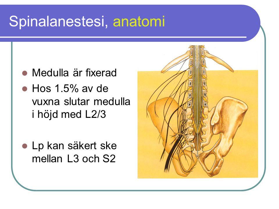 Spinalanestesi, anatomi  Medulla är fixerad  Hos 1.5% av de vuxna slutar medulla i höjd med L2/3  Lp kan säkert ske mellan L3 och S2