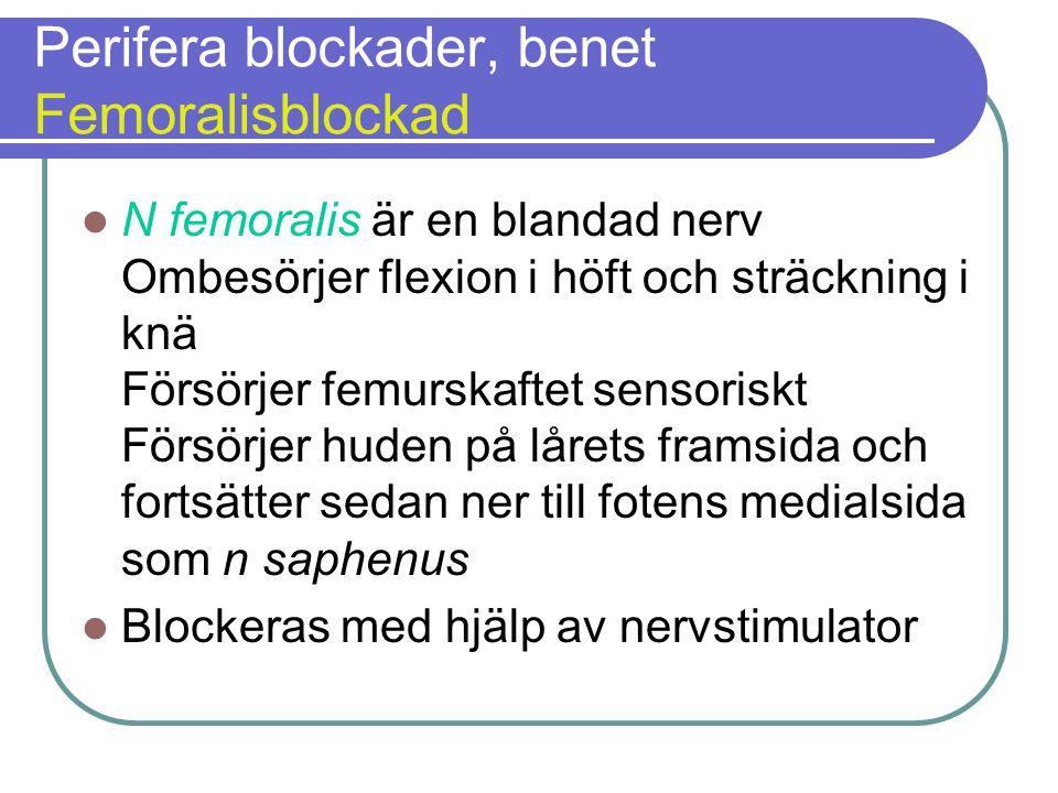 Perifera blockader, benet Femoralisblockad  N femoralis är en blandad nerv Ombesörjer flexion i höft och sträckning i knä Försörjer femurskaftet sensoriskt Försörjer huden på lårets framsida och fortsätter sedan ner till fotens medialsida som n saphenus  Blockeras med hjälp av nervstimulator