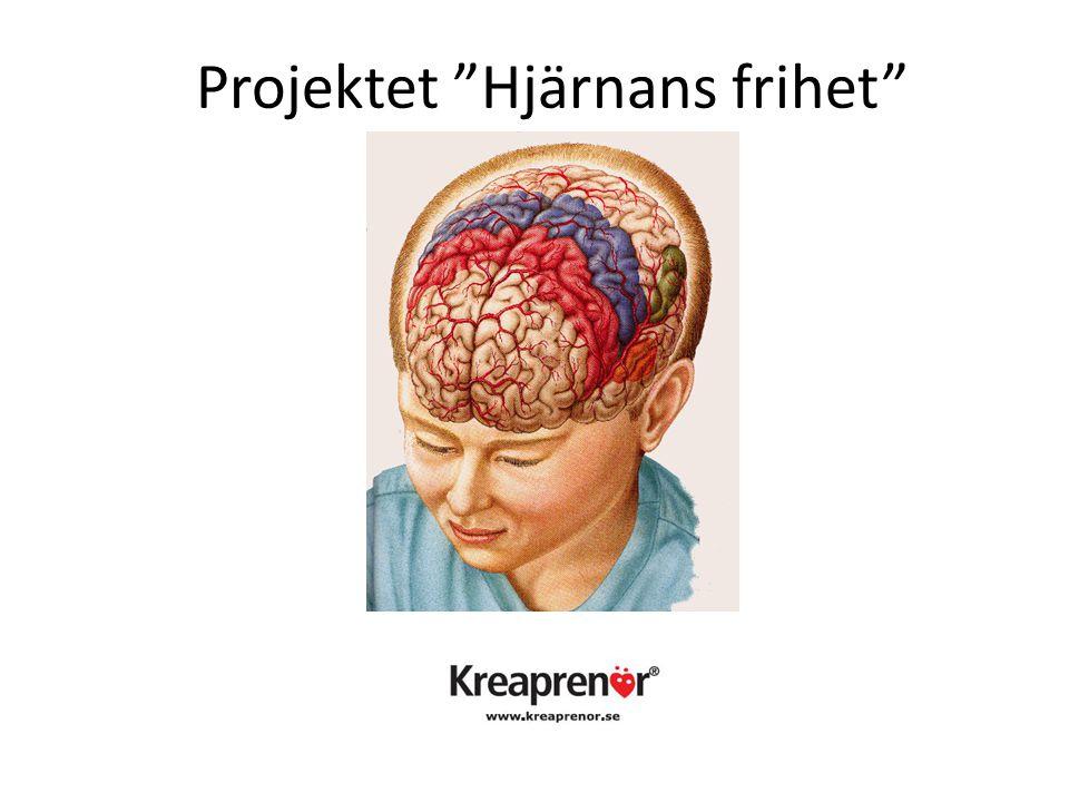 """Projektet """"Hjärnans frihet"""""""