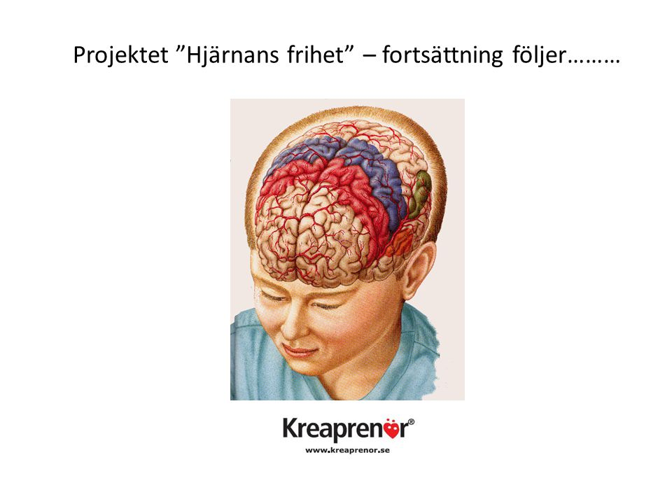 """Projektet """"Hjärnans frihet"""" – fortsättning följer………"""