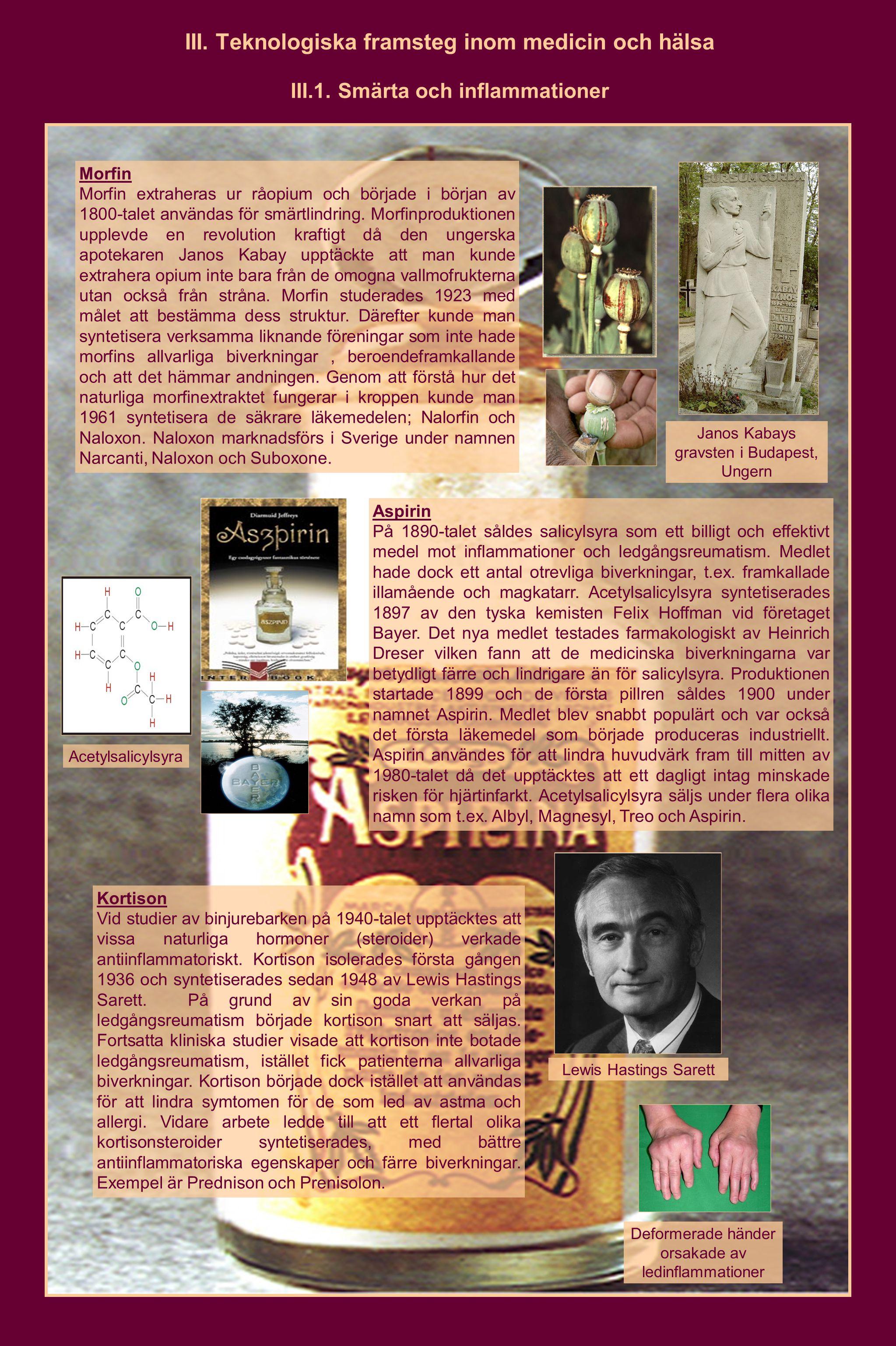 III. Teknologiska framsteg inom medicin och hälsa III.1. Smärta och inflammationer Morfin Morfin extraheras ur råopium och började i början av 1800-ta