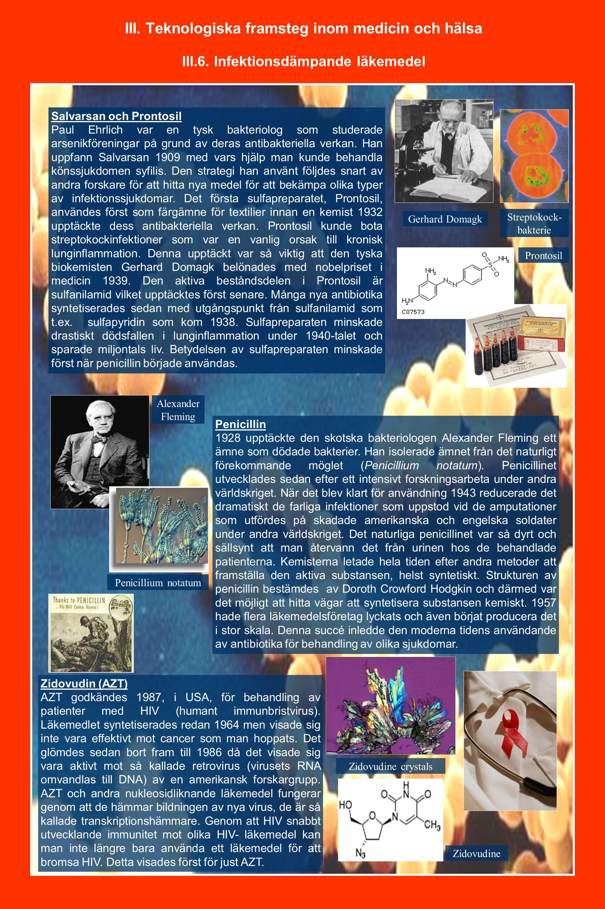 III. Teknologiska framsteg inom medicin och hälsa III.6. Infektionsdämpande läkemedel Salvarsan och Prontosil Paul Ehrlich var en tysk bakteriolog som