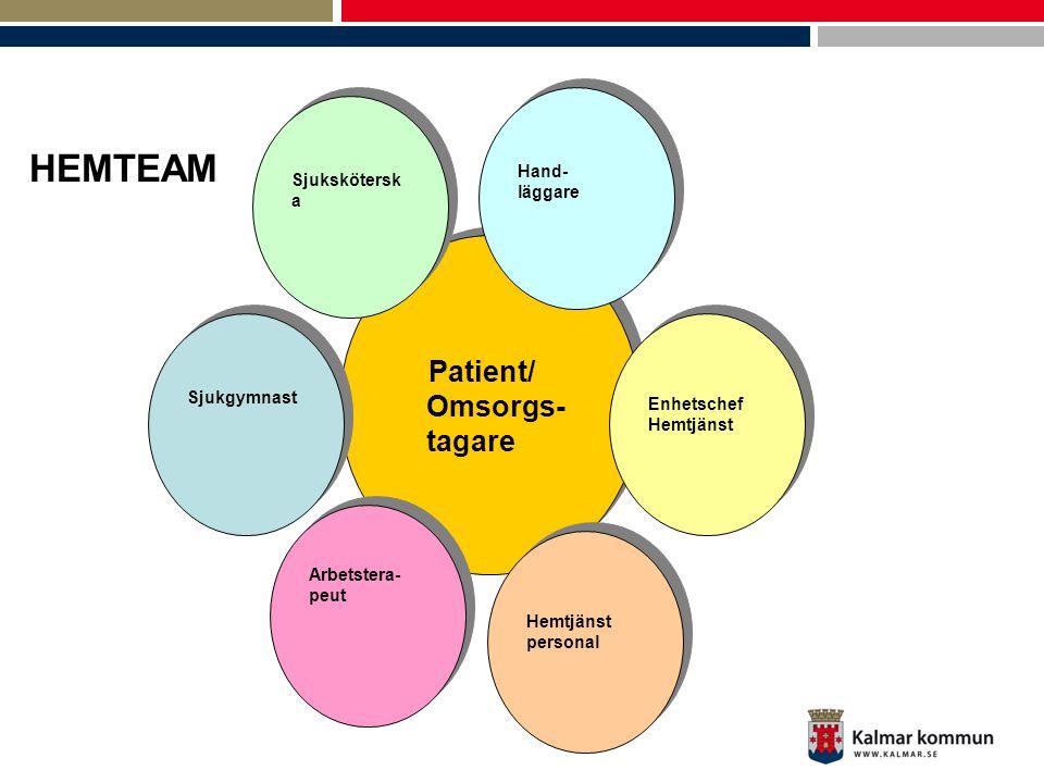 Patient/ Omsorgs- tagare Patient/ Omsorgs- tagare Arbetstera- peut Arbetstera- peut Hemtjänst personal Hemtjänst personal Sjukskötersk a Enhetschef He