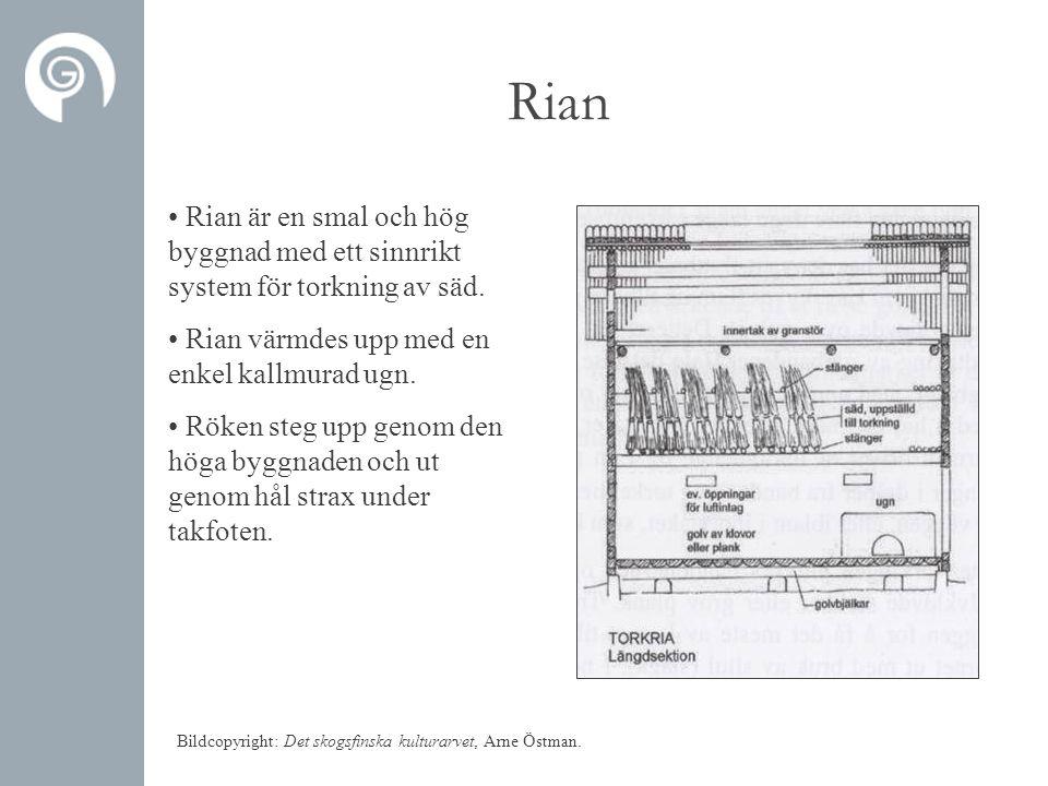 Rian • Rian är en smal och hög byggnad med ett sinnrikt system för torkning av säd. • Rian värmdes upp med en enkel kallmurad ugn. • Röken steg upp ge