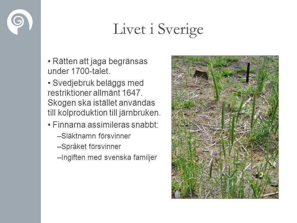 Livet i Sverige • Rätten att jaga begränsas under 1700-talet. • Svedjebruk beläggs med restriktioner allmänt 1647. Skogen ska istället användas till k