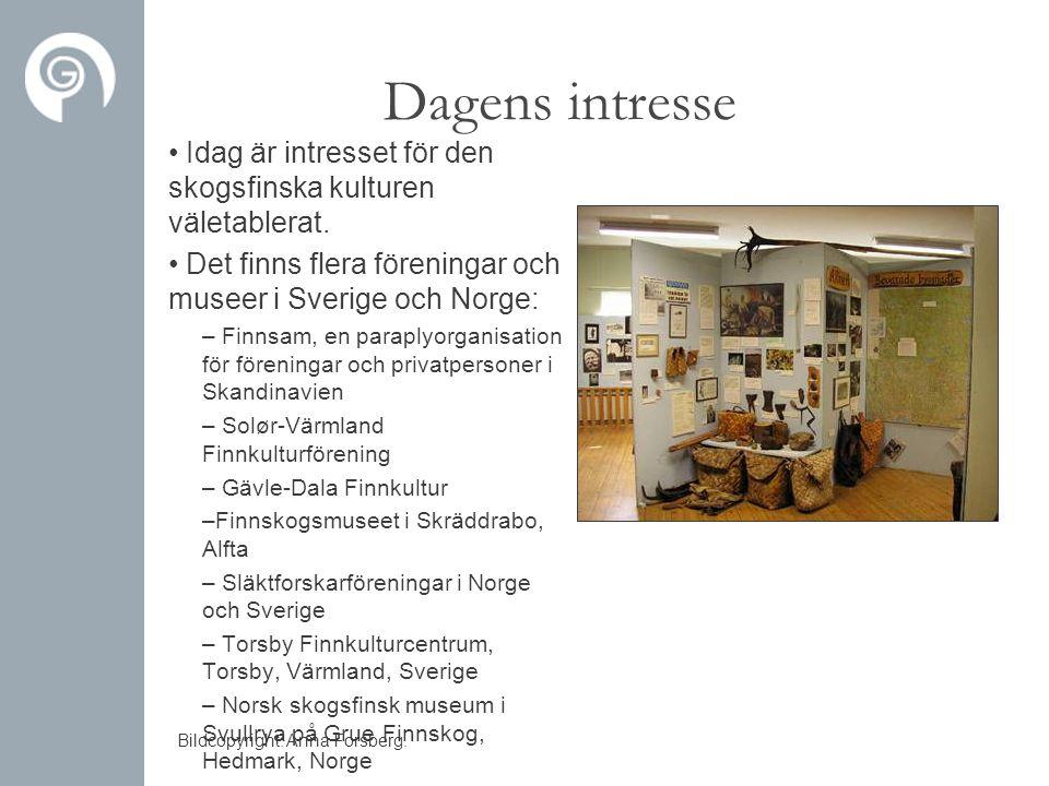Dagens intresse • Idag är intresset för den skogsfinska kulturen väletablerat. • Det finns flera föreningar och museer i Sverige och Norge: – Finnsam,