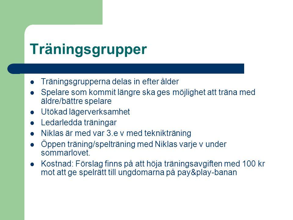 Träningsgrupper  Träningsgrupperna delas in efter ålder  Spelare som kommit längre ska ges möjlighet att träna med äldre/bättre spelare  Utökad lägerverksamhet  Ledarledda träningar  Niklas är med var 3.e v med teknikträning  Öppen träning/spelträning med Niklas varje v under sommarlovet.