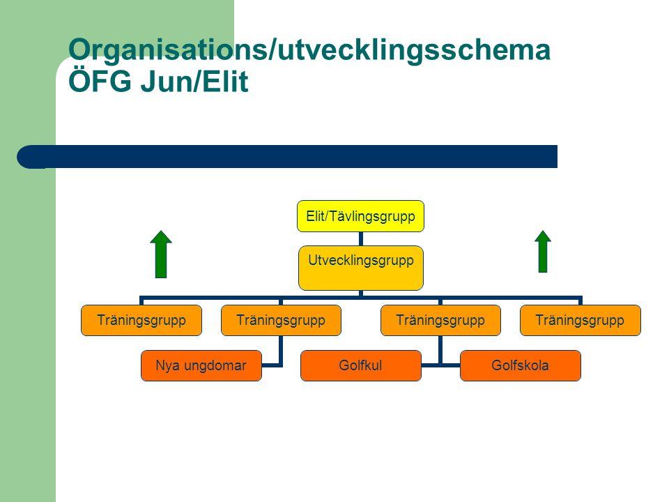 Organisations/utvecklingsschema ÖFG Jun/Elit Elit/Tävlingsgrupp Utvecklingsgrupp Träningsgrupp Nya ungdomar Träningsgrupp GolfkulGolfskola Träningsgrupp