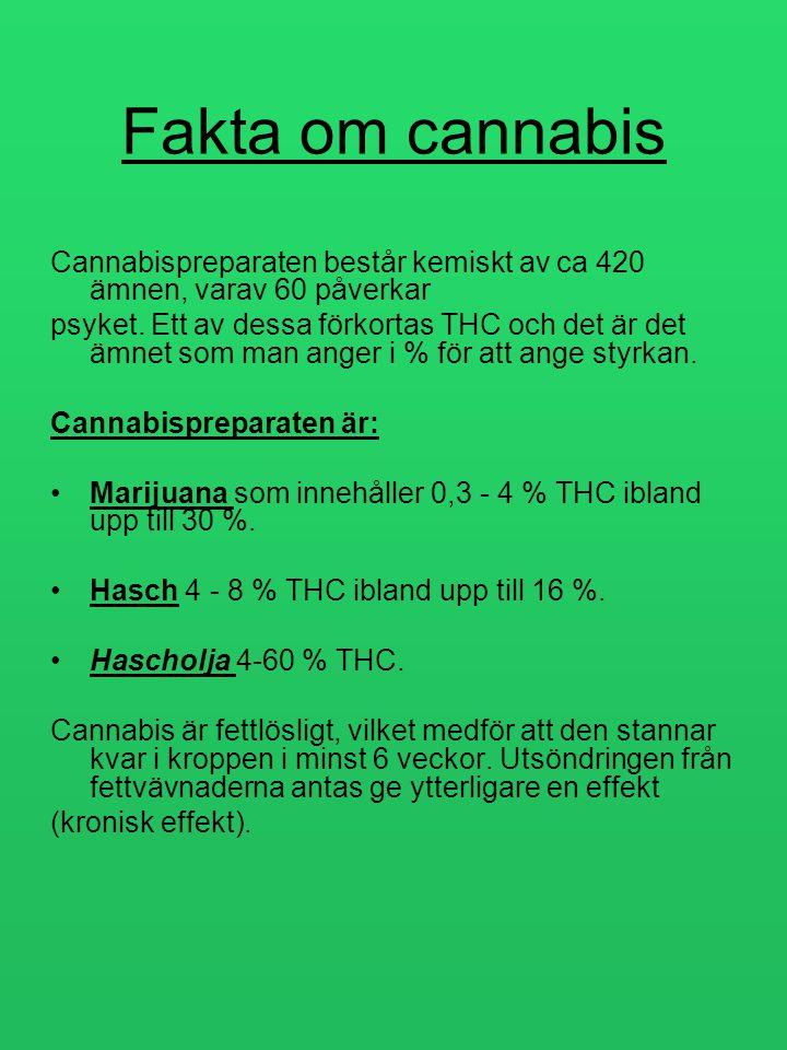 Fakta om cannabis Cannabispreparaten består kemiskt av ca 420 ämnen, varav 60 påverkar psyket. Ett av dessa förkortas THC och det är det ämnet som man
