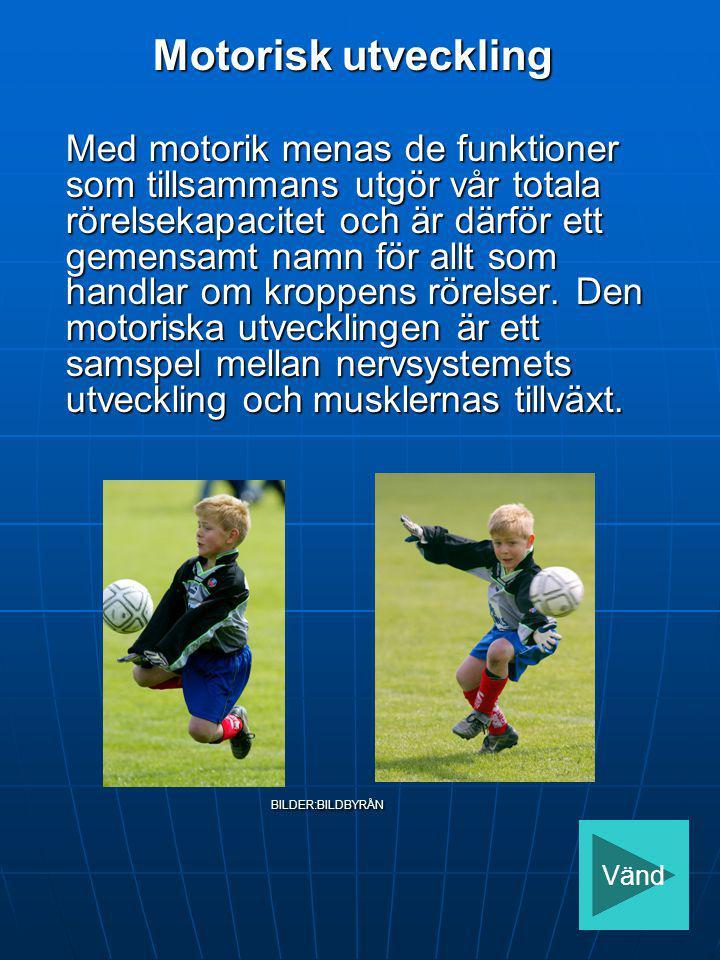 Det innebär att ett upphopp vid inlägg som kräver hög muskelstyrka kan vara svårt att utföra om inte styrkan är fullgod, även om nervsystemet är på en tillräckligt hög nivå.
