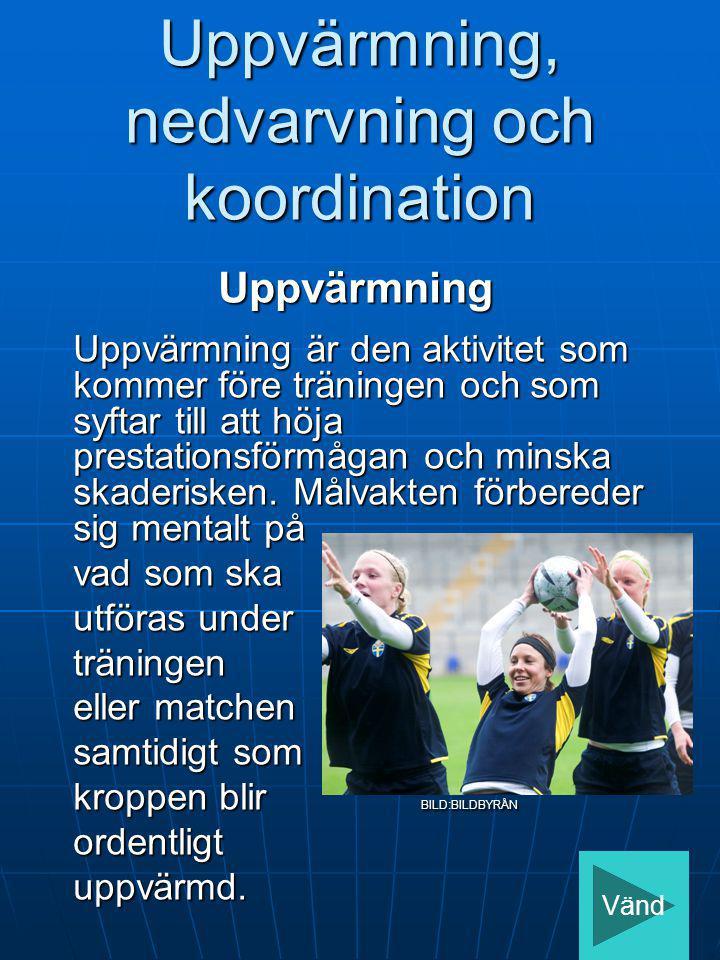 Uppvärmning, nedvarvning och koordination Uppvärmning Uppvärmning är den aktivitet som kommer före träningen och som syftar till att höja prestationsf