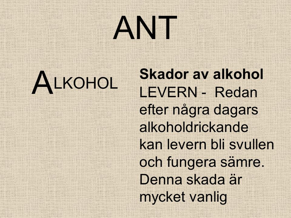 ANT A LKOHOL Skador av alkohol LEVERN - Redan efter några dagars alkoholdrickande kan levern bli svullen och fungera sämre.