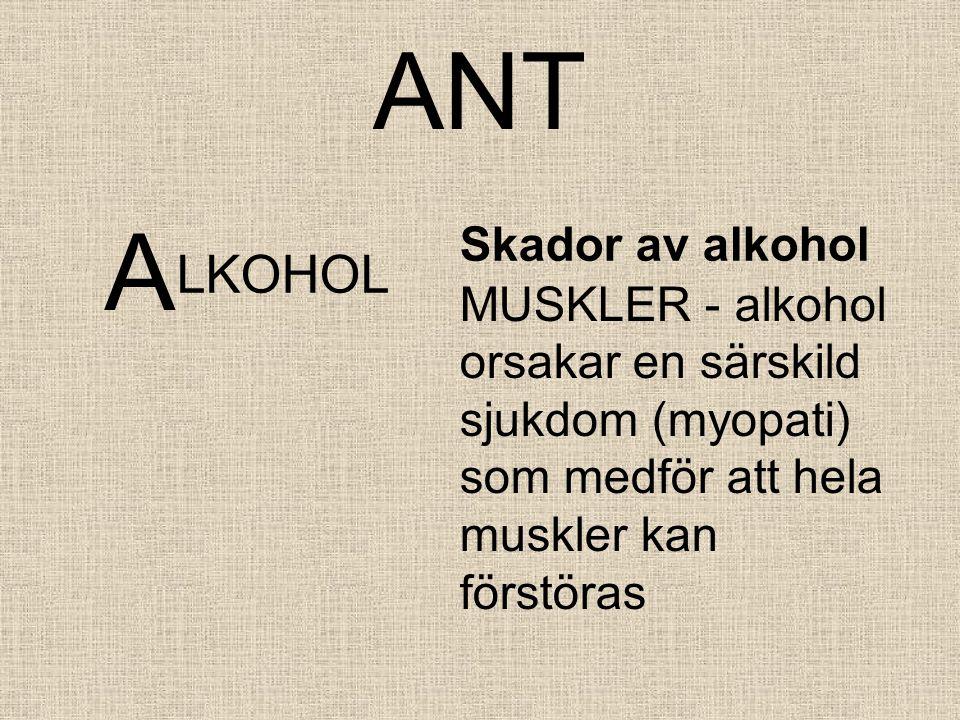 ANT A LKOHOL Skador av alkohol MUSKLER - alkohol orsakar en särskild sjukdom (myopati) som medför att hela muskler kan förstöras