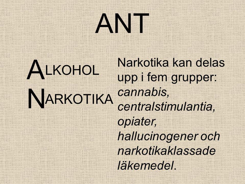 ANT A LKOHOL Narkotika kan delas upp i fem grupper: cannabis, centralstimulantia, opiater, hallucinogener och narkotikaklassade läkemedel.