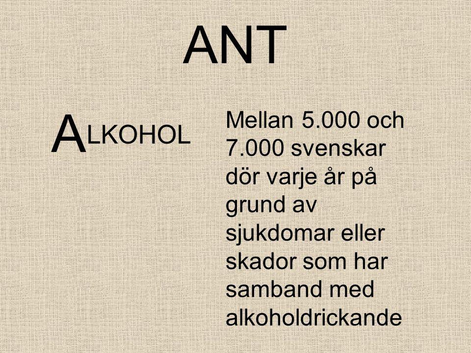 A LKOHOL Mellan 5.000 och 7.000 svenskar dör varje år på grund av sjukdomar eller skador som har samband med alkoholdrickande