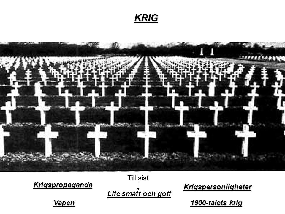 Vapen 1900-talets krig 1900-talets krig KRIG Krigspersonligheter Krigspropaganda Lite smått och gott Till sist