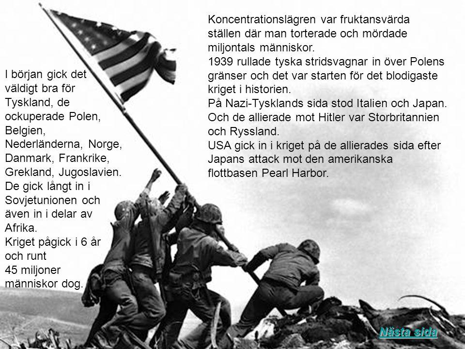 Koncentrationslägren var fruktansvärda ställen där man torterade och mördade miljontals människor. 1939 rullade tyska stridsvagnar in över Polens grän