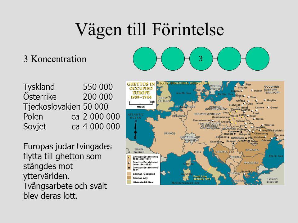 Vägen till Förintelse Tyskland550 000 Österrike 200 000 Tjeckoslovakien50 000 Polen ca 2 000 000 Sovjet ca 4 000 000 Tyskland550 000 Österrike 200 000
