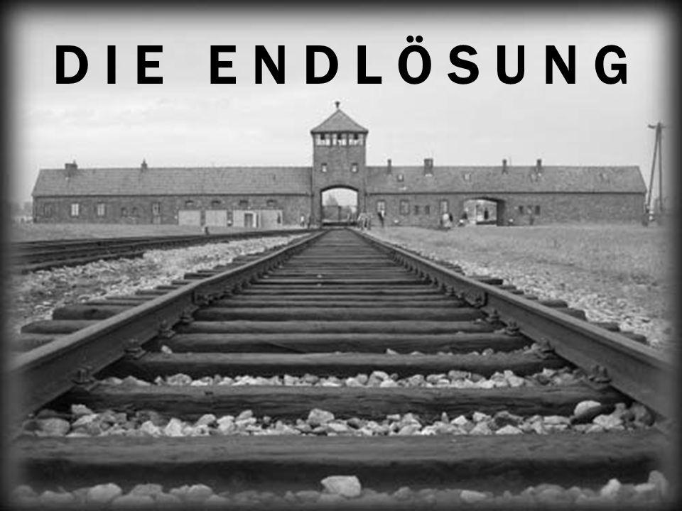 Förintelsen… Varför ska vi läsa om den.•Det får inte hända igen.