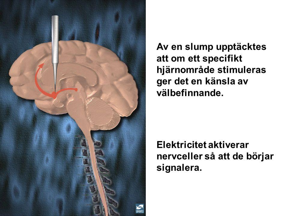 Av en slump upptäcktes att om ett specifikt hjärnområde stimuleras ger det en känsla av välbefinnande. Elektricitet aktiverar nervceller så att de bör