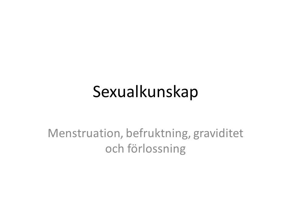 Sexualkunskap Menstruation, befruktning, graviditet och förlossning