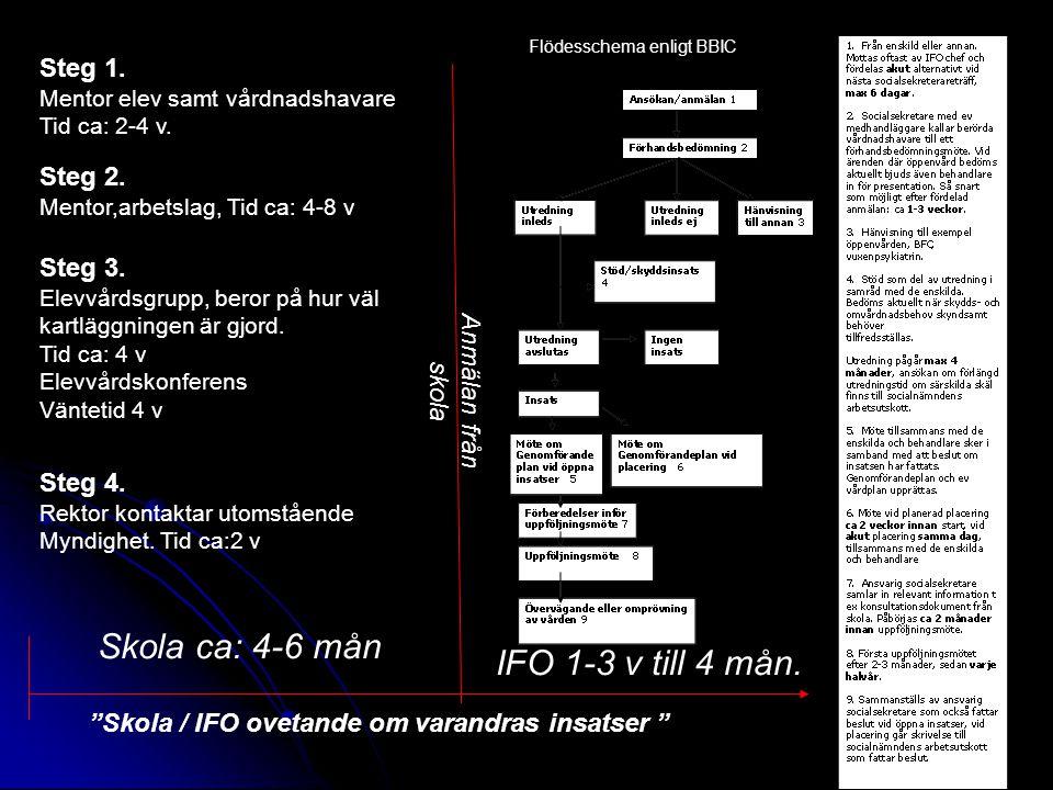 Steg 1. Mentor elev samt vårdnadshavare Tid ca: 2-4 v. Steg 2. Mentor,arbetslag, Tid ca: 4-8 v Steg 3. Elevvårdsgrupp, beror på hur väl kartläggningen