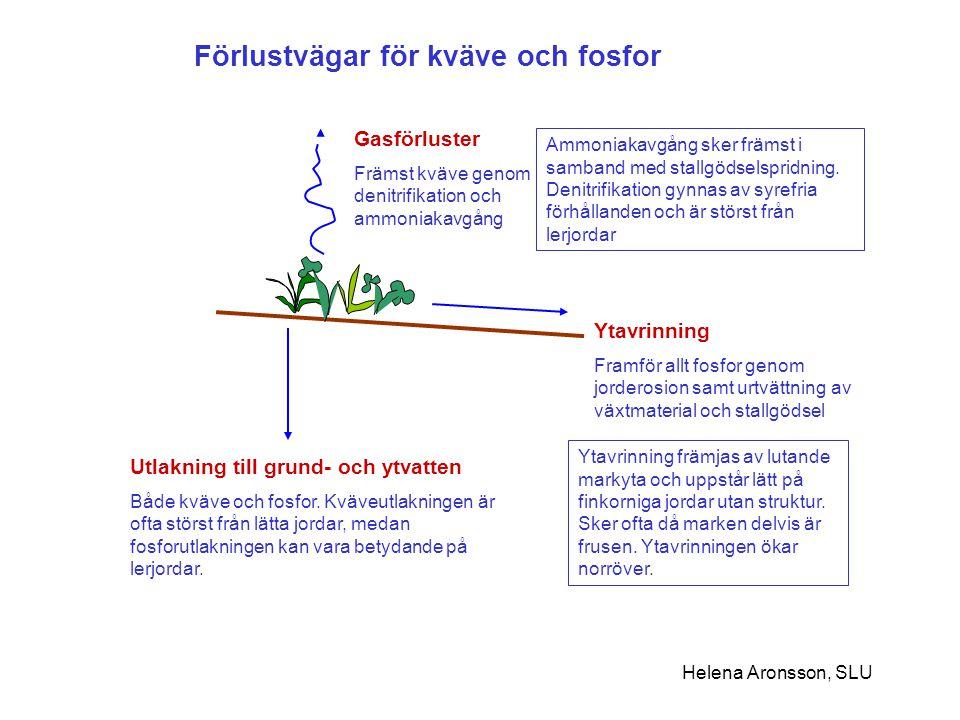 Förlustvägar för kväve och fosfor Gasförluster Främst kväve genom denitrifikation och ammoniakavgång Ytavrinning Framför allt fosfor genom jorderosion