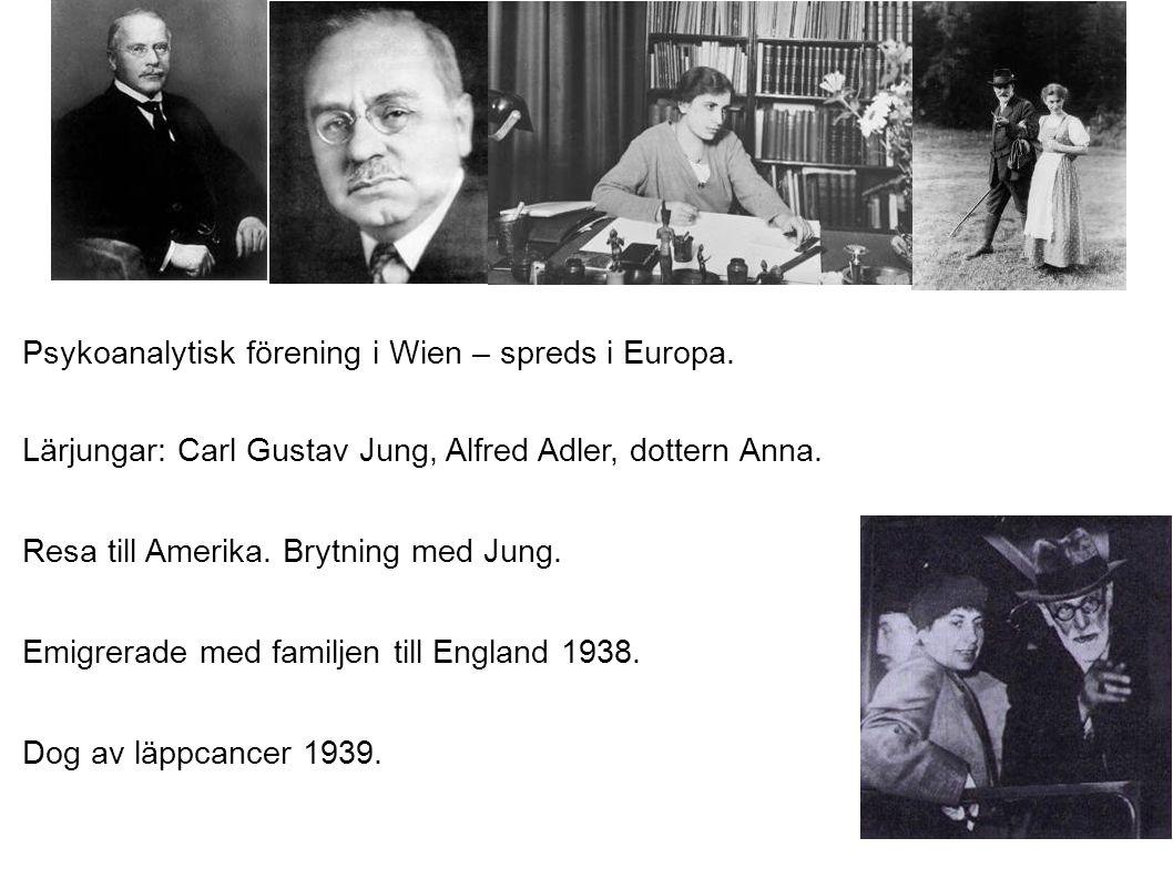 Psykoanalytisk förening i Wien – spreds i Europa. Lärjungar: Carl Gustav Jung, Alfred Adler, dottern Anna. Resa till Amerika. Brytning med Jung. Emigr