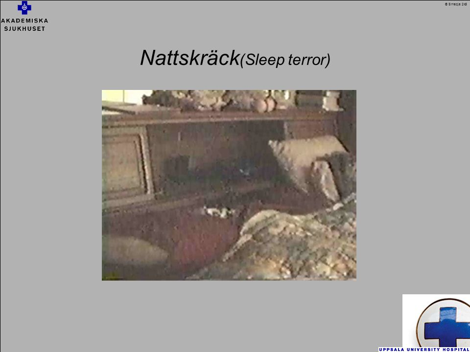 Nattskräck (Sleep terror) © Smedje 2k5