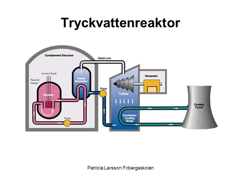 Tryckvattenreaktor Patricia Larsson Fribergaskolan