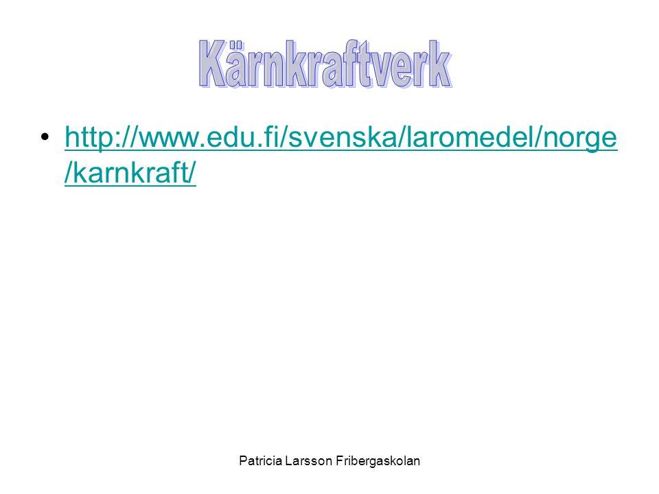 •http://www.edu.fi/svenska/laromedel/norge /karnkraft/http://www.edu.fi/svenska/laromedel/norge /karnkraft/ Patricia Larsson Fribergaskolan