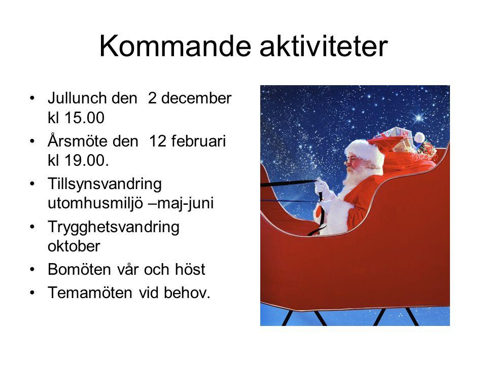 Kommande aktiviteter •Jullunch den 2 december kl 15.00 •Årsmöte den 12 februari kl 19.00.