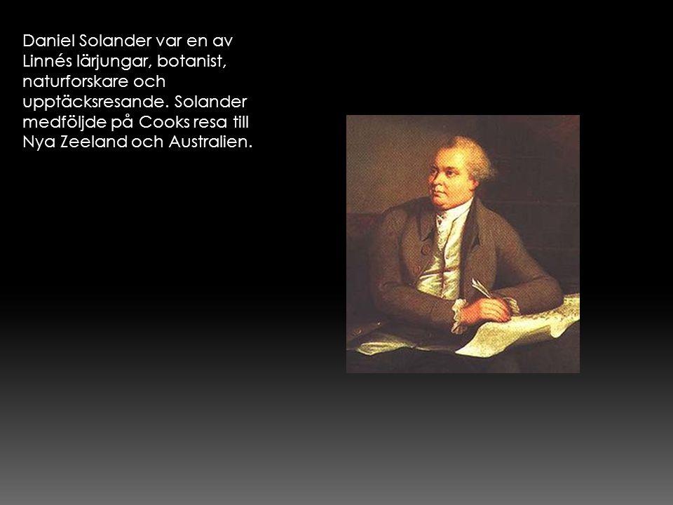 Daniel Solander var en av Linnés lärjungar, botanist, naturforskare och upptäcksresande. Solander medföljde på Cooks resa till Nya Zeeland och Austral