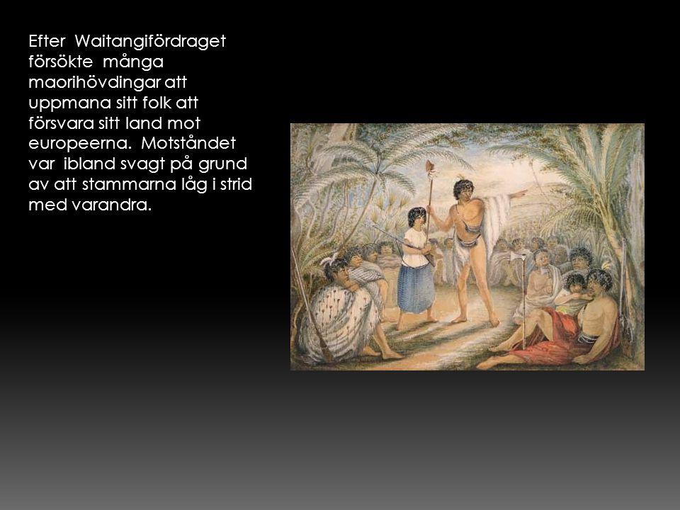 Efter Waitangifördraget försökte många maorihövdingar att uppmana sitt folk att försvara sitt land mot europeerna. Motståndet var ibland svagt på grun