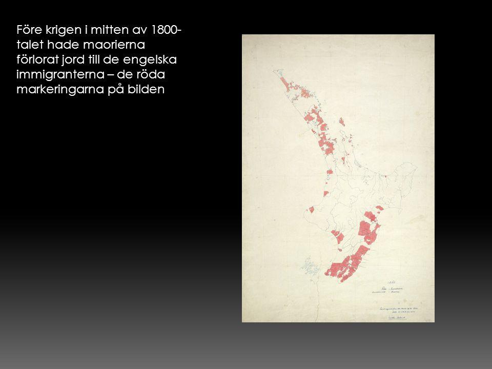 Före krigen i mitten av 1800- talet hade maorierna förlorat jord till de engelska immigranterna – de röda markeringarna på bilden