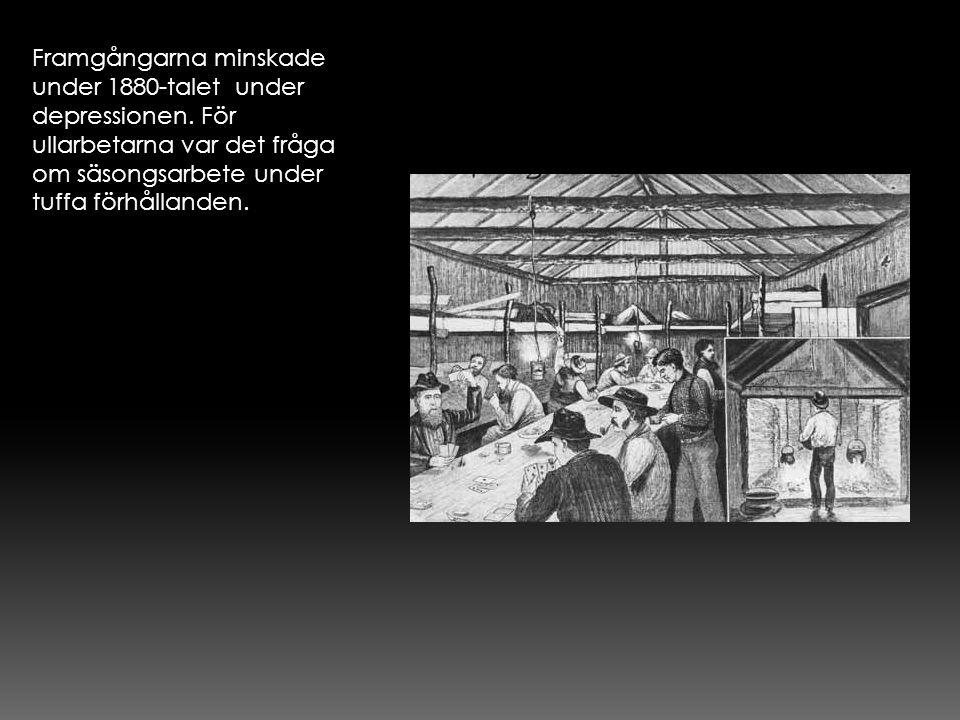 Framgångarna minskade under 1880-talet under depressionen. För ullarbetarna var det fråga om säsongsarbete under tuffa förhållanden.