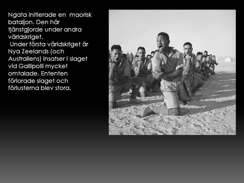 Ngata initierade en maorisk bataljon. Den här tjänstgjorde under andra världskriget. Under första världskriget är Nya Zeelands (och Australiens) insat
