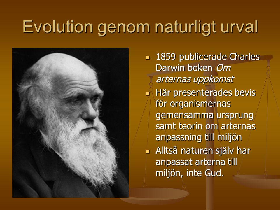 Evolution genom naturligt urval  1859 publicerade Charles Darwin boken Om arternas uppkomst  Här presenterades bevis för organismernas gemensamma ur