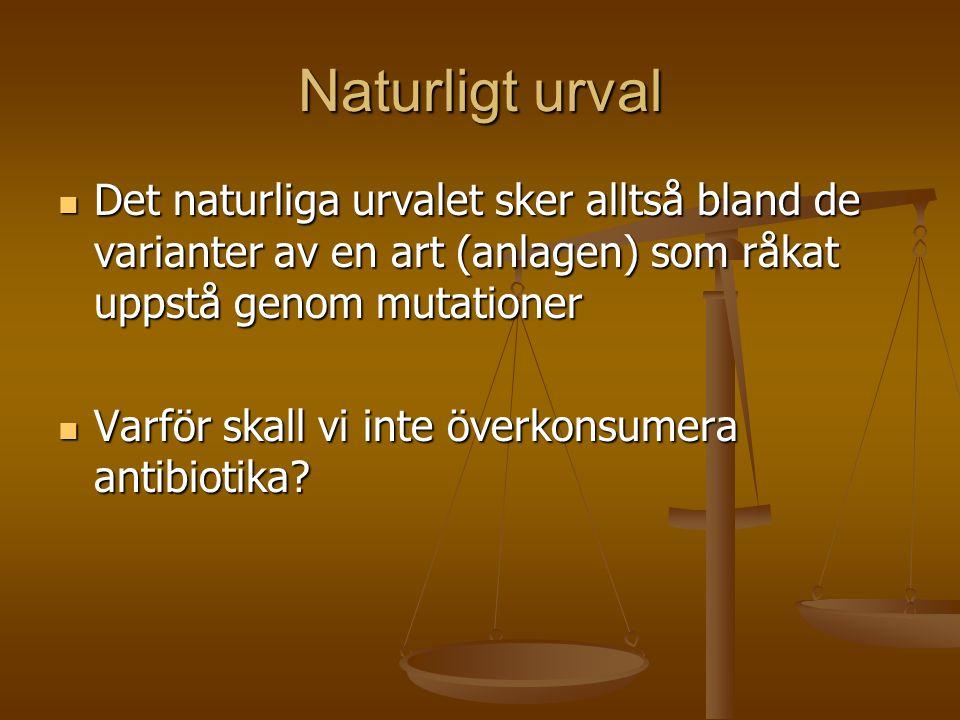 Naturligt urval  Det naturliga urvalet sker alltså bland de varianter av en art (anlagen) som råkat uppstå genom mutationer  Varför skall vi inte öv