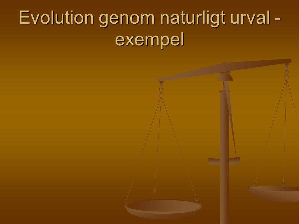 Evolution genom naturligt urval - exempel