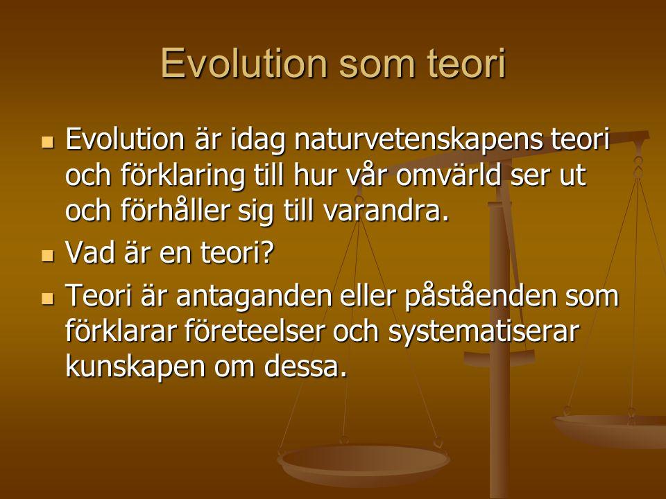 Evolution som teori  Evolution är idag naturvetenskapens teori och förklaring till hur vår omvärld ser ut och förhåller sig till varandra.  Vad är e