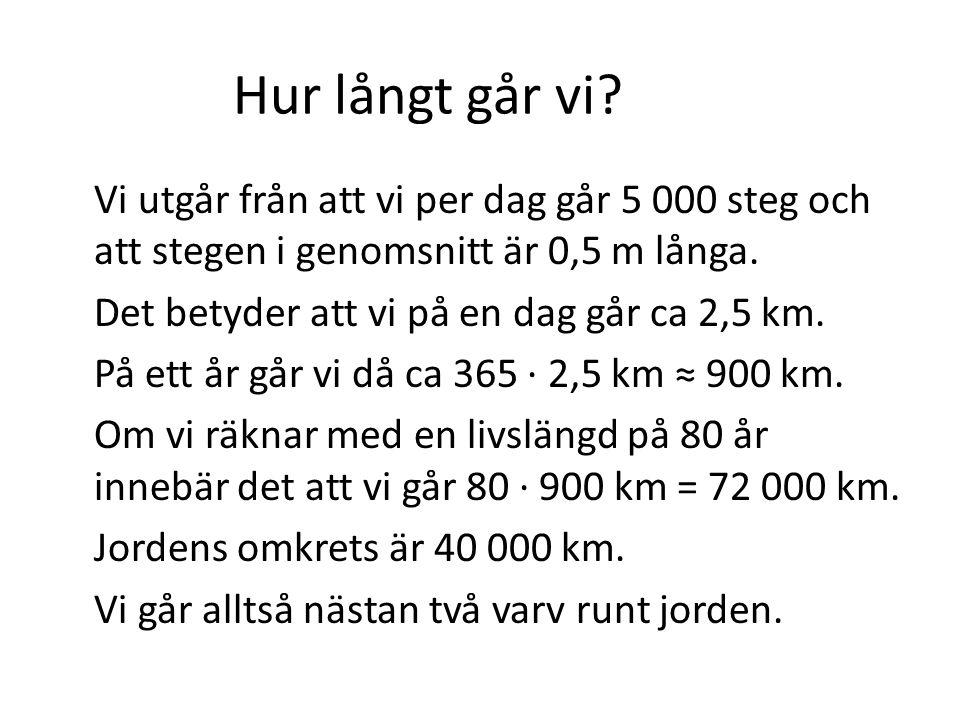 Hur långt går vi? Vi utgår från att vi per dag går 5 000 steg och att stegen i genomsnitt är 0,5 m långa. Det betyder att vi på en dag går ca 2,5 km.